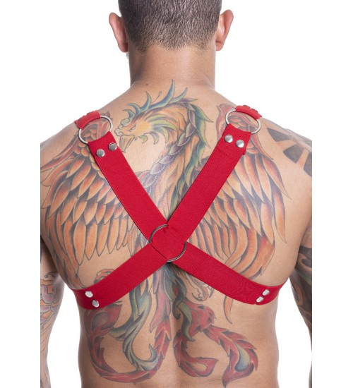 HARNESS ELASTIC RED